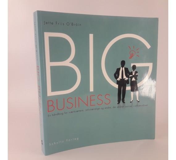Big Business - En håndbog for iværksættere, selvstændige og andre der ønsker succes i erhvervslivet af Jette Friis O'Brôin