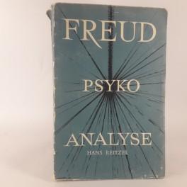 PsykoanalysenafSigmundFreud-20